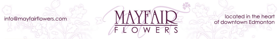 Mayfair flowers logo and tagline